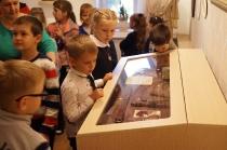 Первоклашки в музее_10